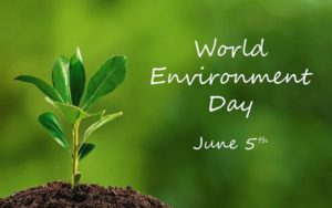 Giornata mondiale dell'ambiente - Lotta alla Plastica
