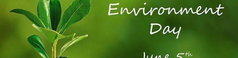 Giornata mondiale dell'ambiente – lotta alla plastica!