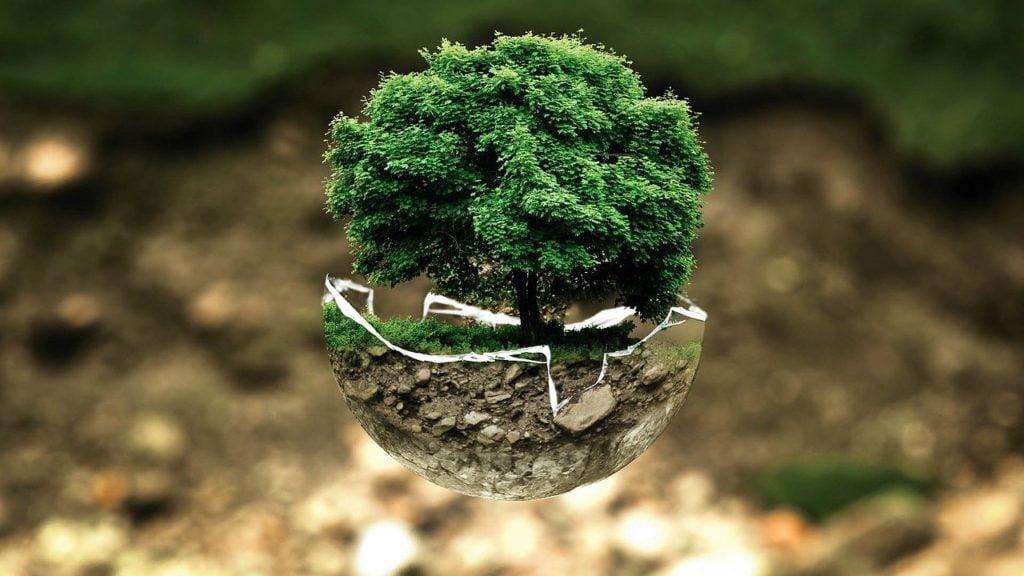 Glossario ecosostenibile