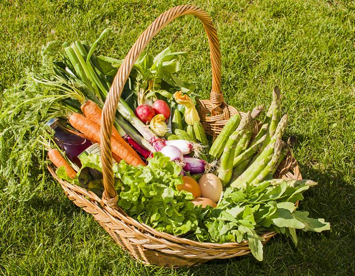 Mangiare sostenibile